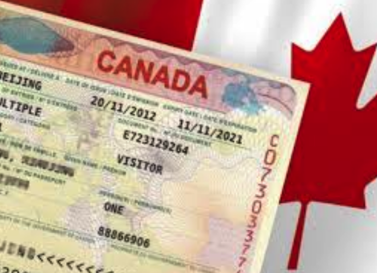 CANADIAN TOURIST VISA APPLICATION, A STEP BY STEP GUIDE Travel